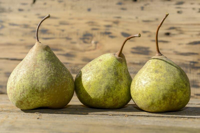 在行的三个梨 免版税库存图片
