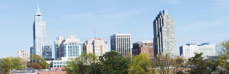 在街市罗利, NC的看法 库存图片