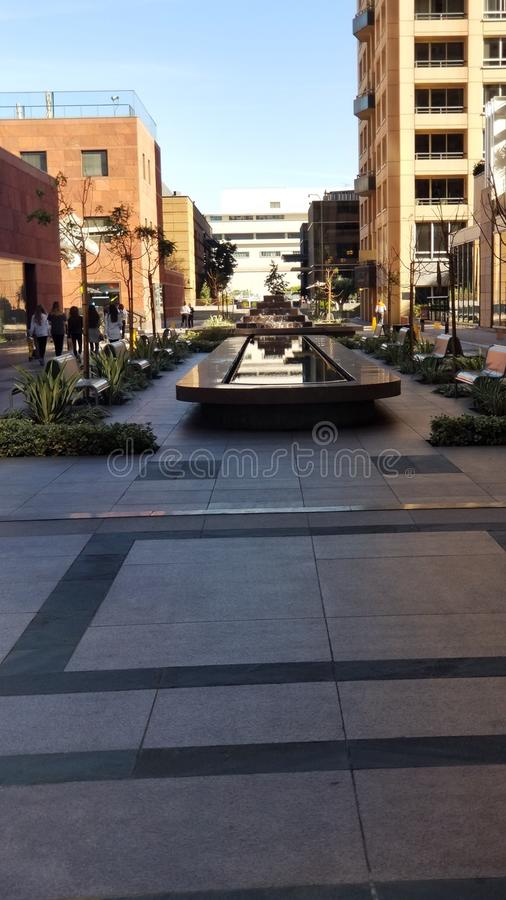 在街市LA的跳动道路 库存图片