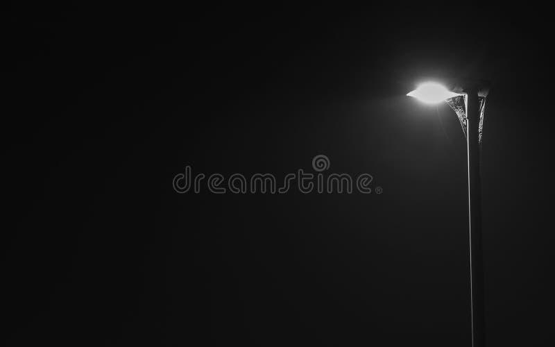 在街灯上的蜘蛛网夜 库存图片