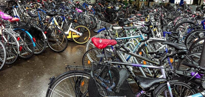 在街道上停放的许多自行车 免版税库存图片