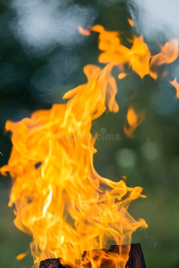 在街道上的火燃烧 烤肉烟熏腊肠 图库摄影