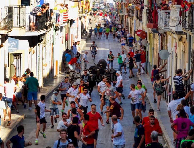 在街道的Corrida在西班牙村庄,人跑与公牛 免版税库存照片