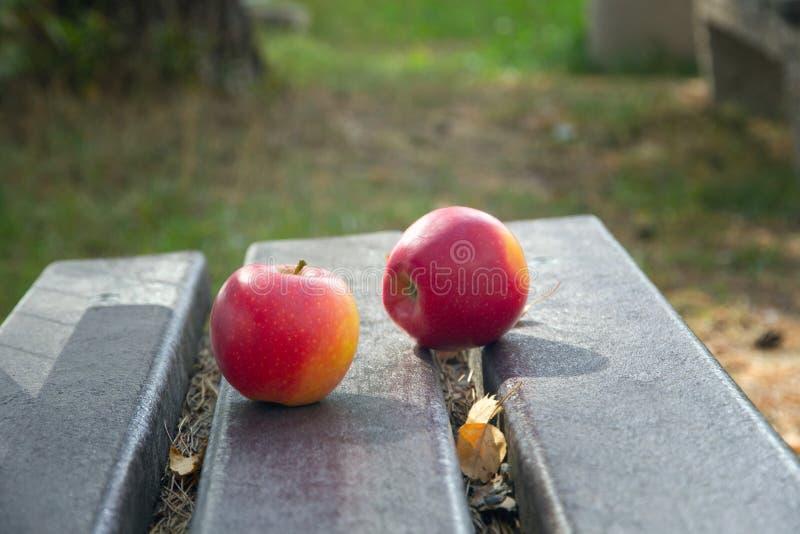 在街道长凳的两个红色苹果 库存图片