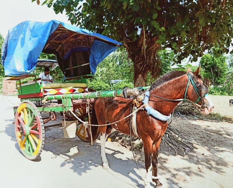 在街道,印度上的一个美丽的马推车 免版税图库摄影