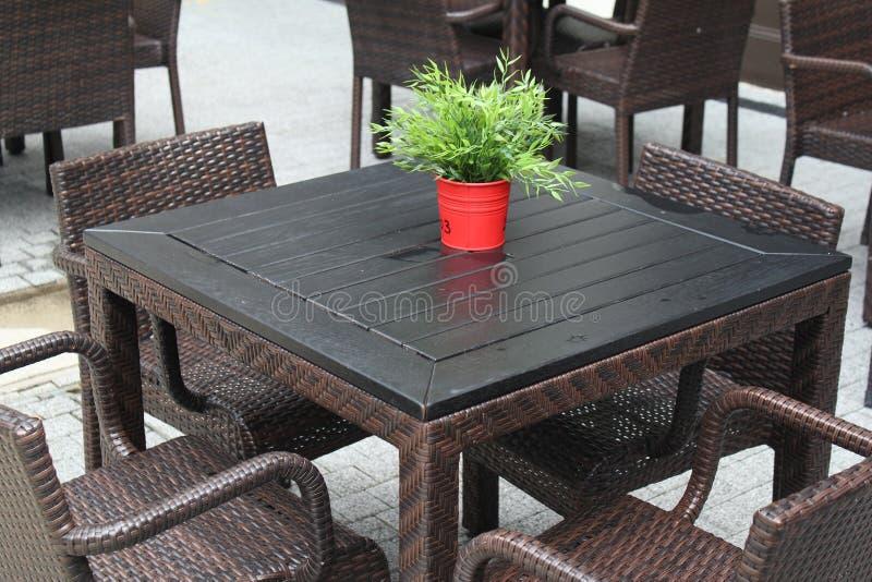 在表上的红色盆的植物 免版税库存图片