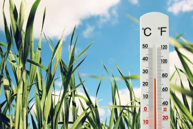 在表明天气变动的绿色年轻草的领域的温度计 免版税库存照片