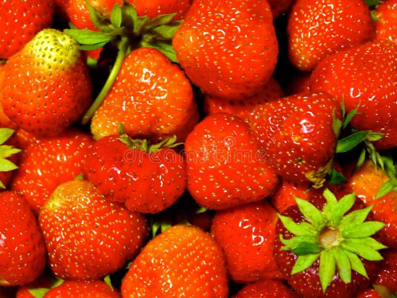 在表的草莓 库存图片