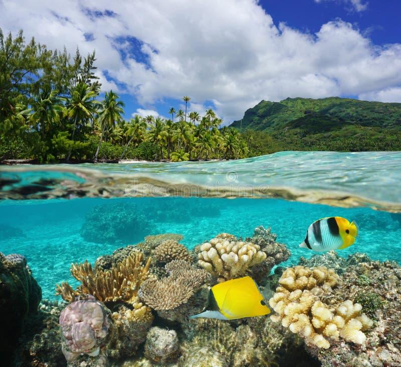在表面盐水湖法属玻里尼西亚上下 库存图片