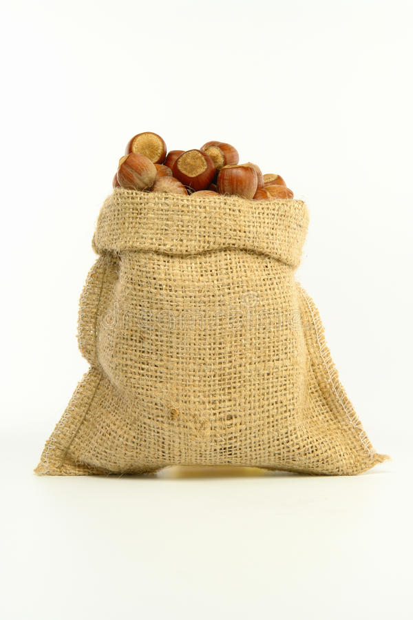 在袋子的榛子 免版税图库摄影