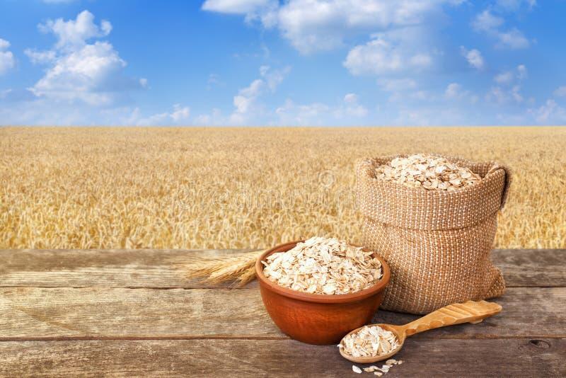 在袋子的燕麦粥与成熟领域 免版税库存照片