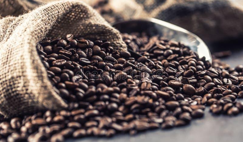 在袋子的特写镜头新鲜的烤咖啡豆 免版税库存图片