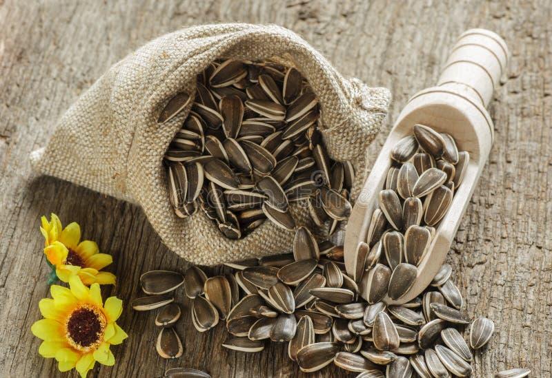 在袋子的花种子 免版税库存照片