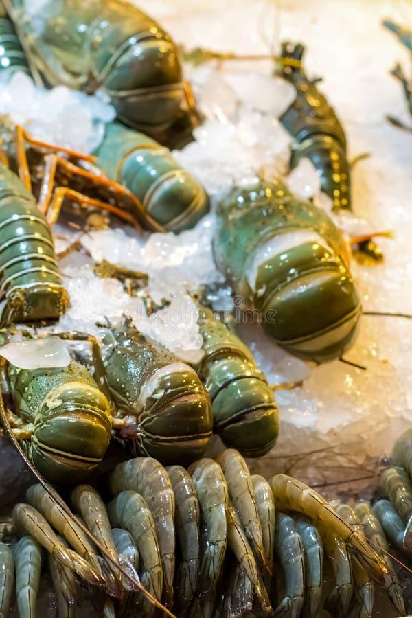 在被击碎的冰垂直的盘子街市亚洲新鲜的海鲜的集合皇家未加工的龙虾虾 免版税库存照片