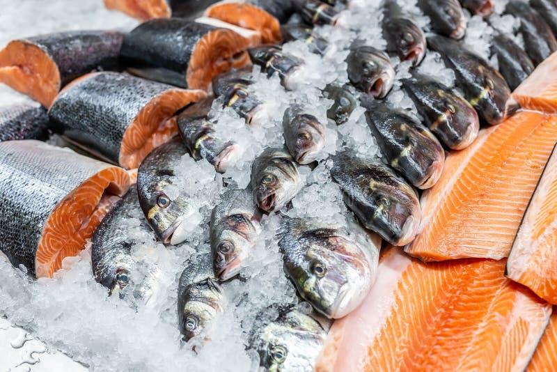 在被击碎的冰的新鲜的海鲜在鱼市上 在显示柜台的未加工的dorado,雪鱼和三文鱼内圆角在商店 鱼去骨切片 免版税库存照片