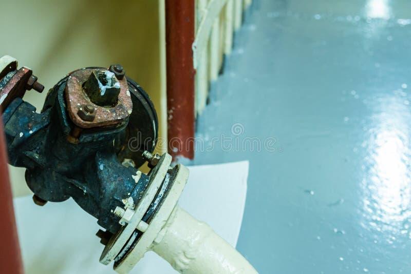 在被安装边缘的管子的黄柏公鸡 库存照片