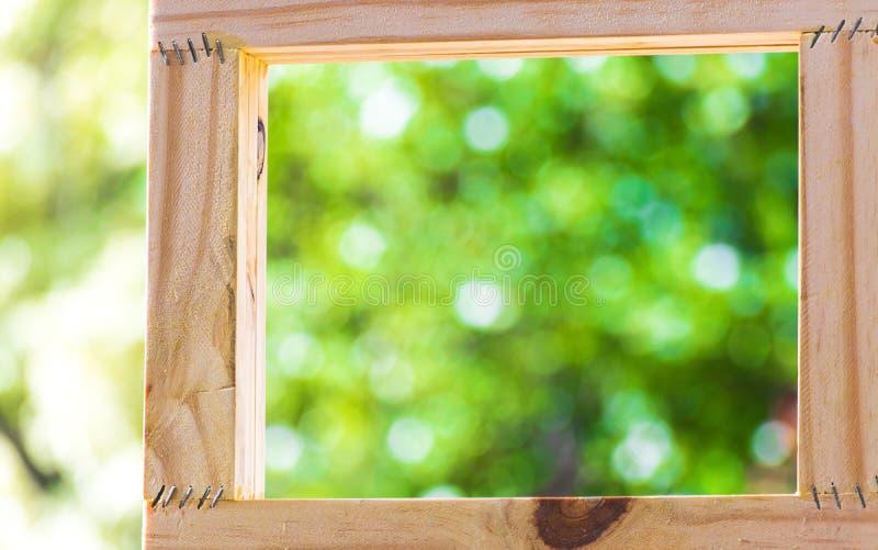 在被弄脏的树backgroud的想法工作的画框使用墙纸或背景 库存照片