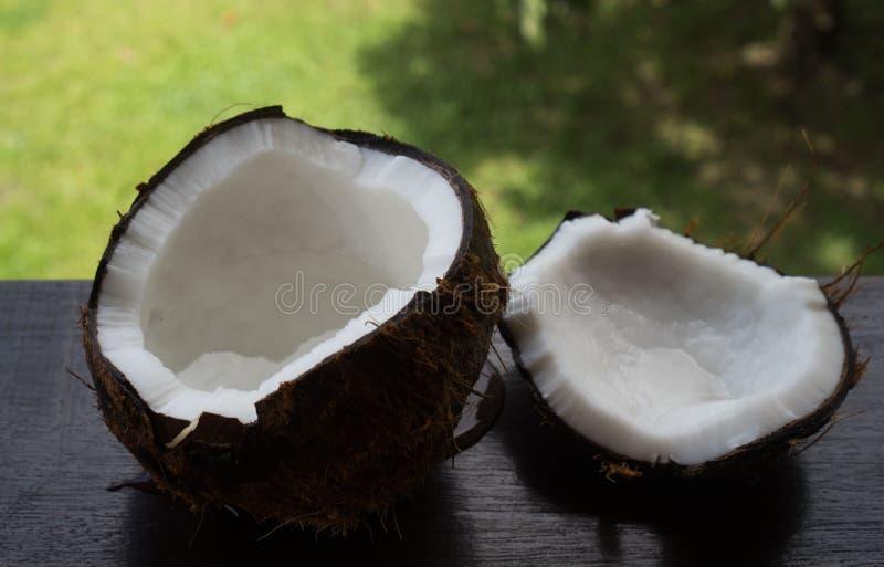 在被弄脏的棕榈树背景的椰子 库存照片