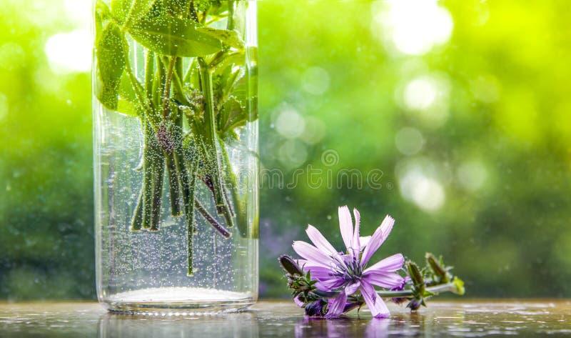 在被弄脏的绿色背景花瓶在花桌上的水泡影抽去 库存图片