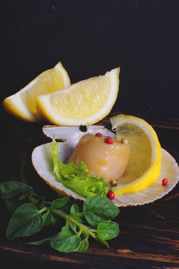 在被打开的壳的自然扇贝在黑暗的背景用柠檬和绿色 图库摄影