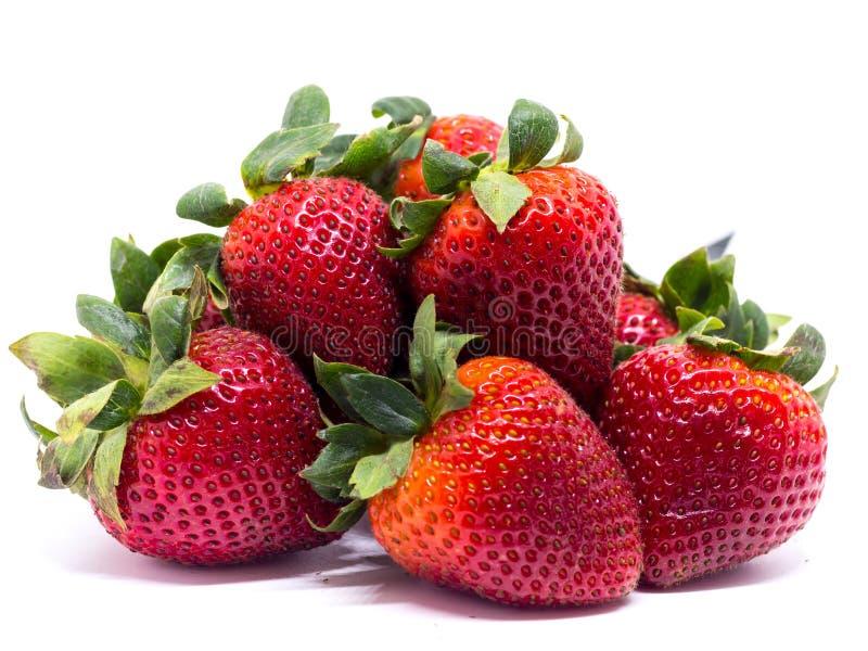 在被查看的特写镜头新鲜的射击草莓之上 背景查出的白色 免版税图库摄影