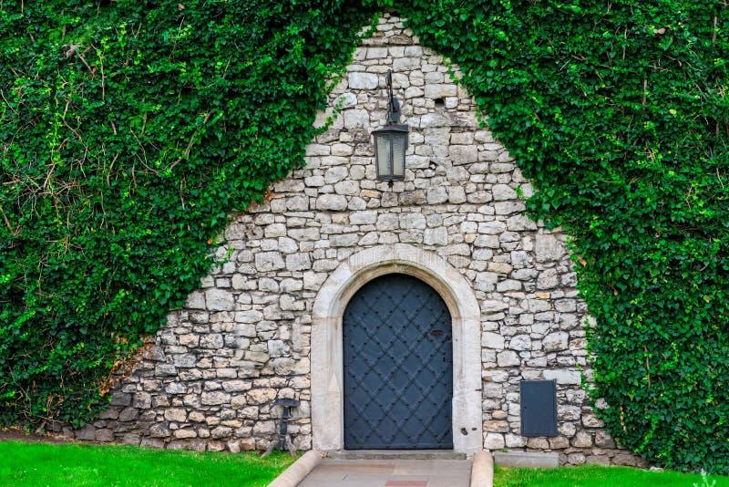 在被盖的一个石墙的背景的美丽的中世纪门 免版税库存图片