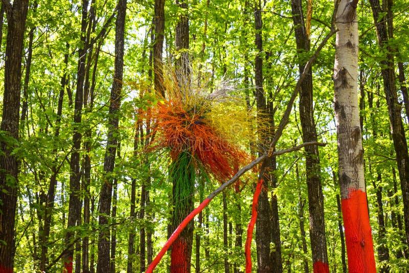 在被绘的树的五颜六色的巢在五颜六色的森林或Padurea从Poienari的Colorata,罗马尼亚里 免版税库存图片