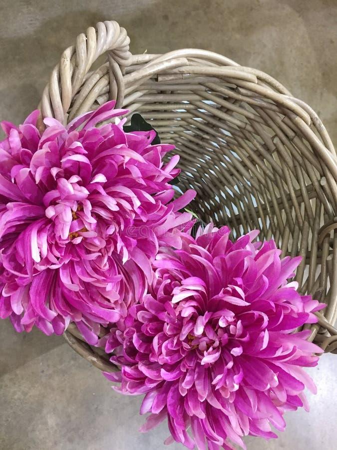在被编织的篮子的人为紫色菊花 免版税图库摄影