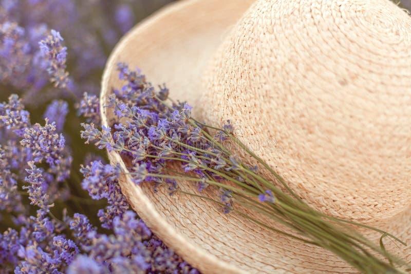 在被编织的帽子浅顶软呢帽的淡紫色花束 免版税图库摄影