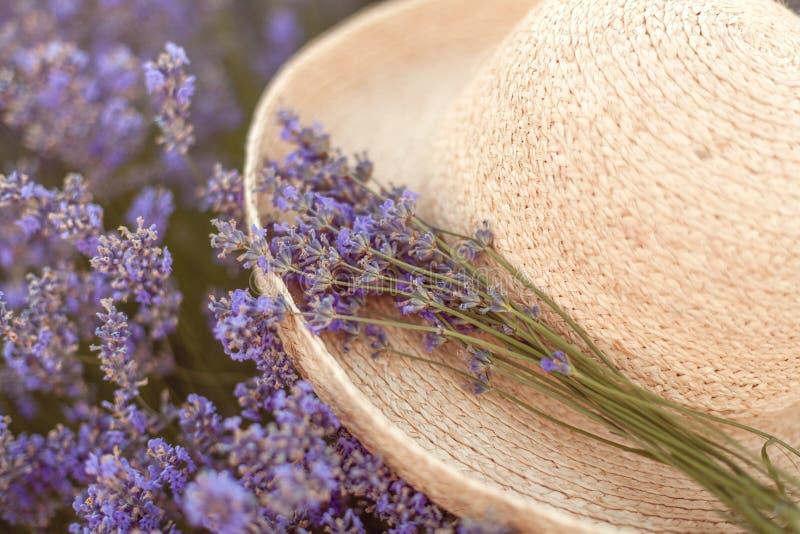 在被编织的帽子浅顶软呢帽的淡紫色花束 库存图片