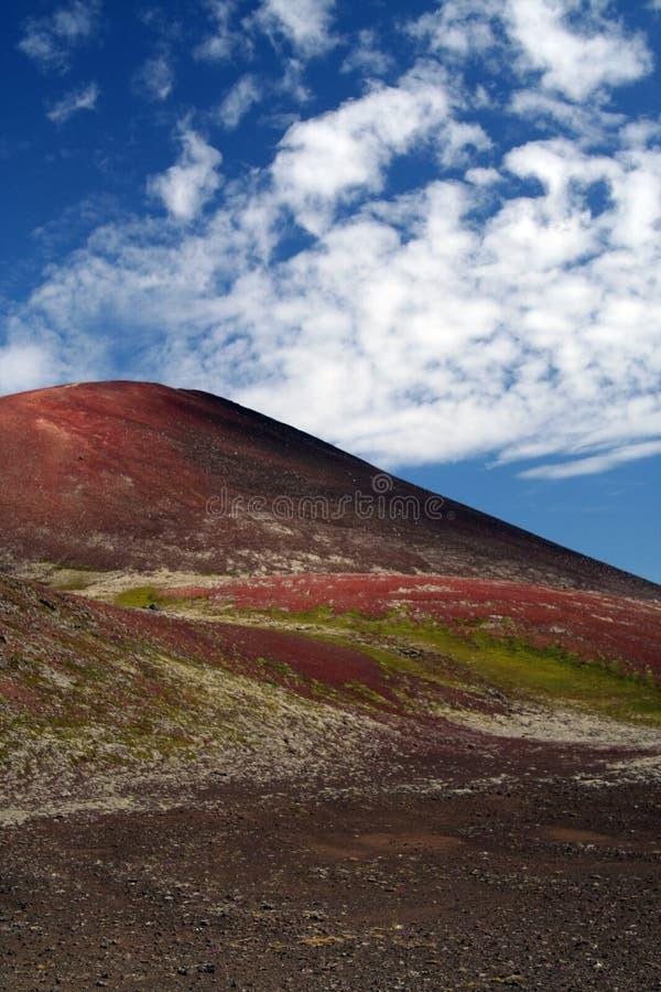在被隔绝的土坎的看法贫瘠干燥红色和绿色 图库摄影