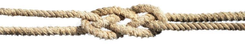 在被隔绝的绳索的结 库存照片