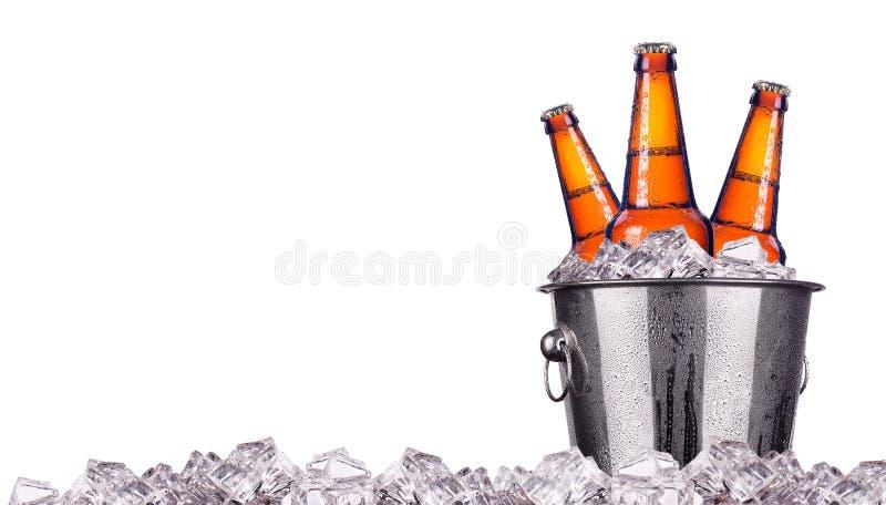 Download 在被隔绝的冰桶的啤酒瓶 库存图片. 图片 包括有 多维数据集, 盒盖, 男中音, 酒精, 一击, 时段, 结算 - 33441163