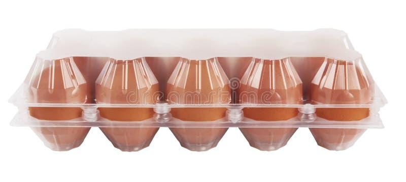 在塑料的鸡蛋 免版税库存图片