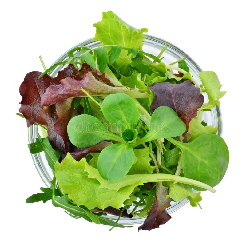 在被隔绝的碗,顶视图的新鲜的混杂的绿色蔬菜叶 图库摄影