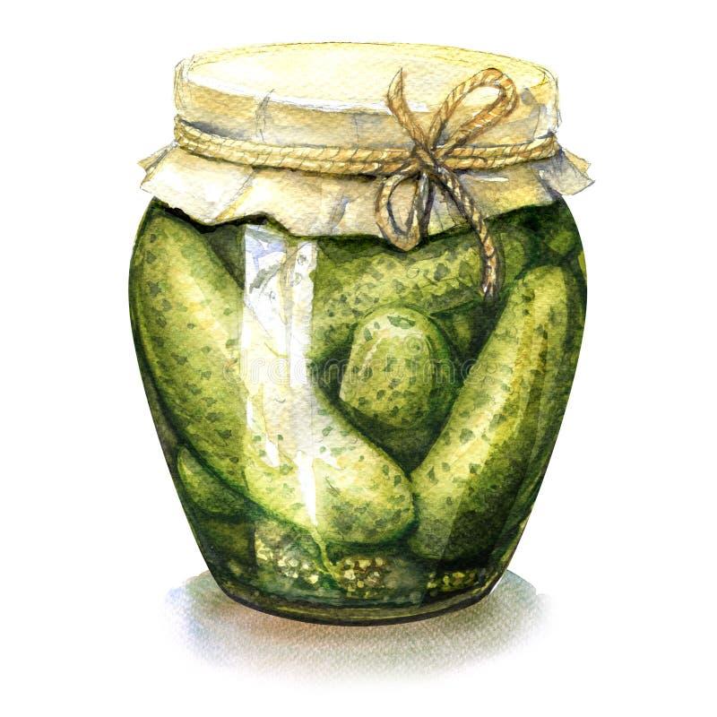 在被隔绝的玻璃瓶子,水彩例证的自创烂醉如泥,罐装黄瓜 皇族释放例证