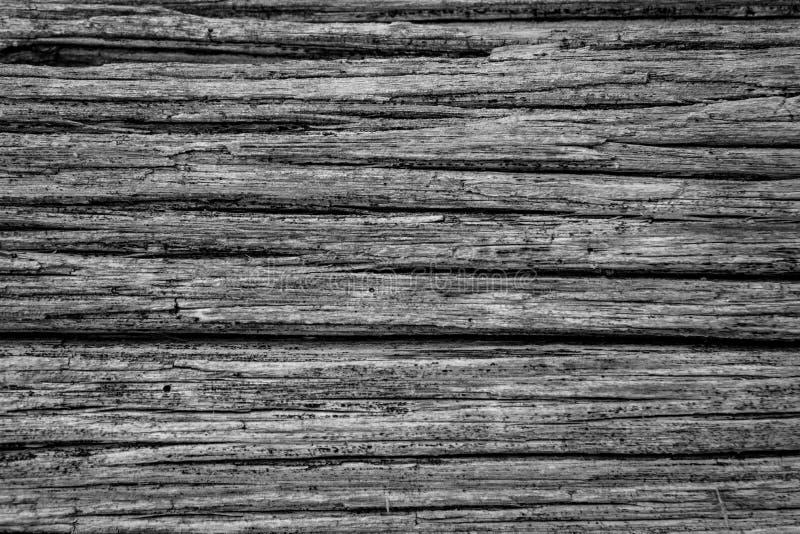 在被风化的木头外面的黑白土气背景 免版税库存照片