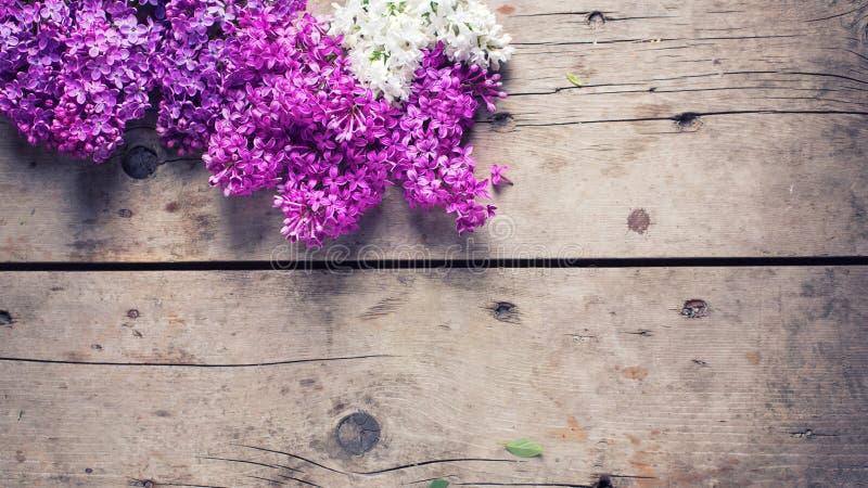 Download 在被风化的木背景的花 库存照片. 图片 包括有 照片, 图象, 新鲜, 自然, 浪漫, 邀请, 背包, 明信片 - 72356918
