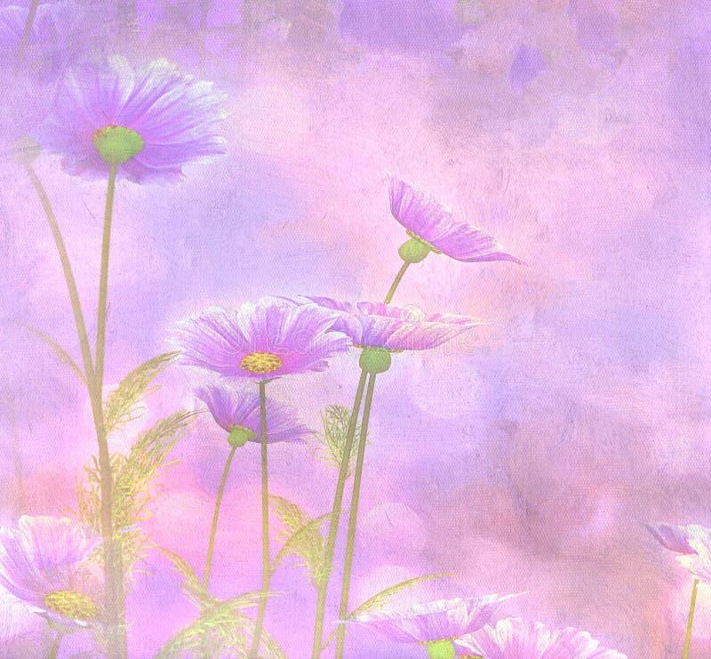 在被绘的背景的紫色波斯菊 皇族释放例证