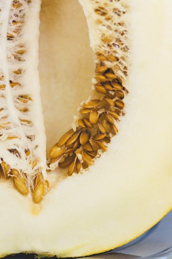 在裁减的瓜与向日葵种子 图库摄影