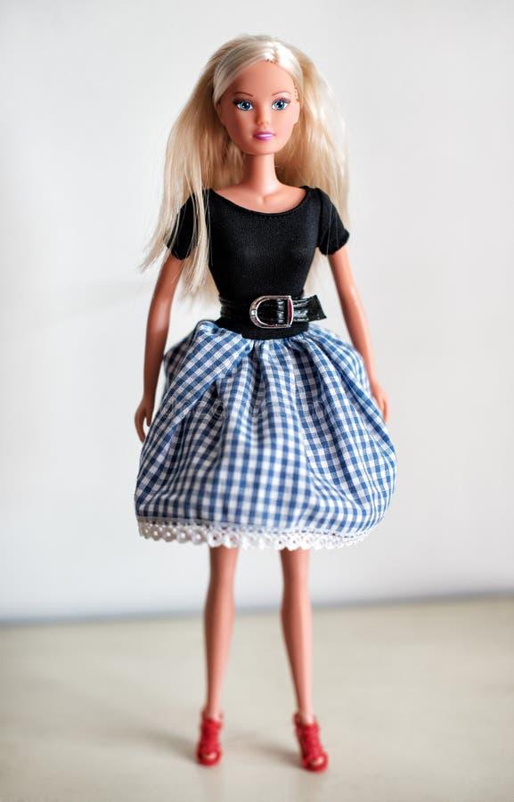 在裙子的唯一白肤金发的玩偶 库存图片