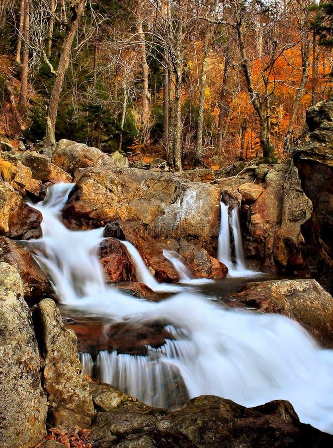 在褴褛河的秋天颜色 库存照片