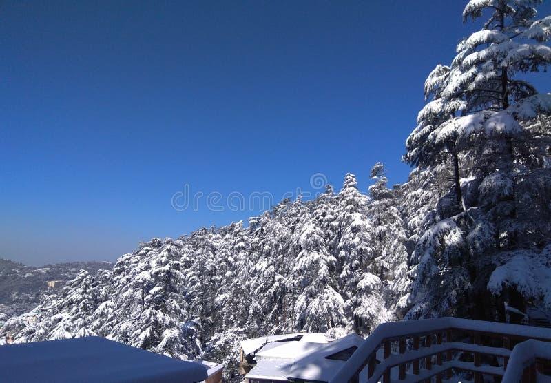 在西姆拉小山的雪 库存照片
