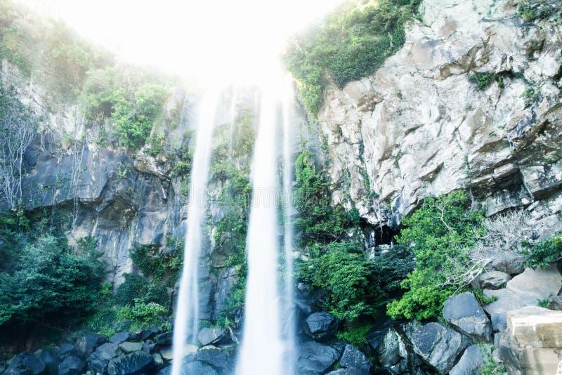在西归浦,济州海岛,韩国浇灌落出于阳光在Joengbang瀑布 库存图片