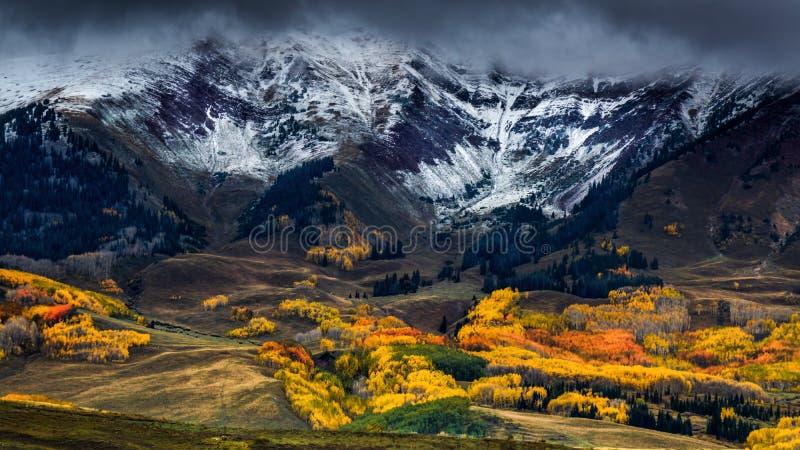 在西方麋的秋天 库存照片