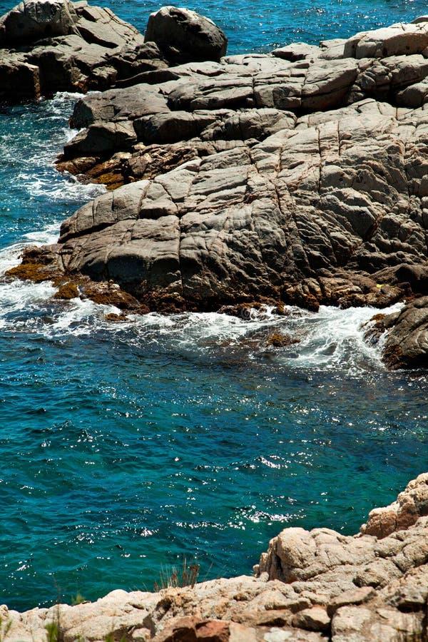 在西班牙支持与植物和峭壁波浪的看法 免版税库存图片