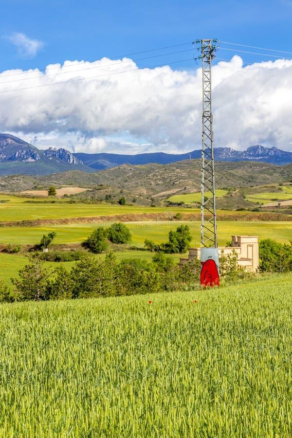 在西班牙春小麦领域的偏僻的电定向塔 库存照片