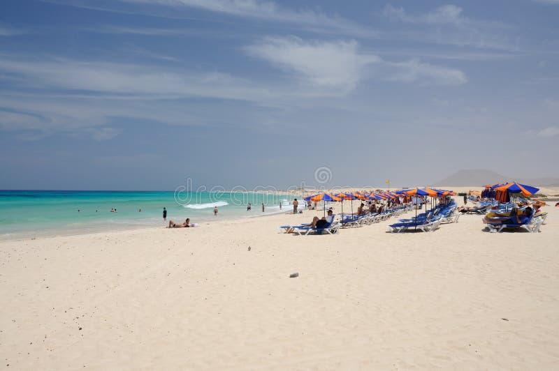 在西班牙附近的海滩corralejo费埃特文图拉岛 免版税库存图片