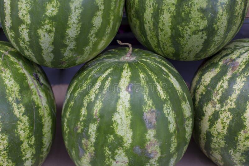 在西瓜的新鲜的条纹提取果子五颜六色的样式纹理背景 库存图片