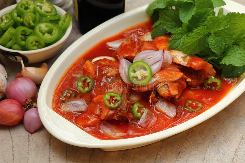 在西红柿酱的辣沙丁鱼装鱼于罐中,泰国食物样式 图库摄影